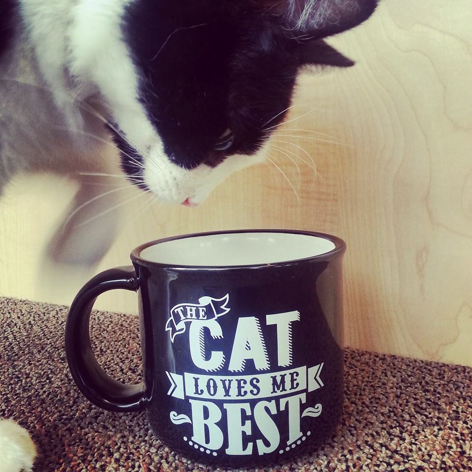 Cat hair with your coffee?