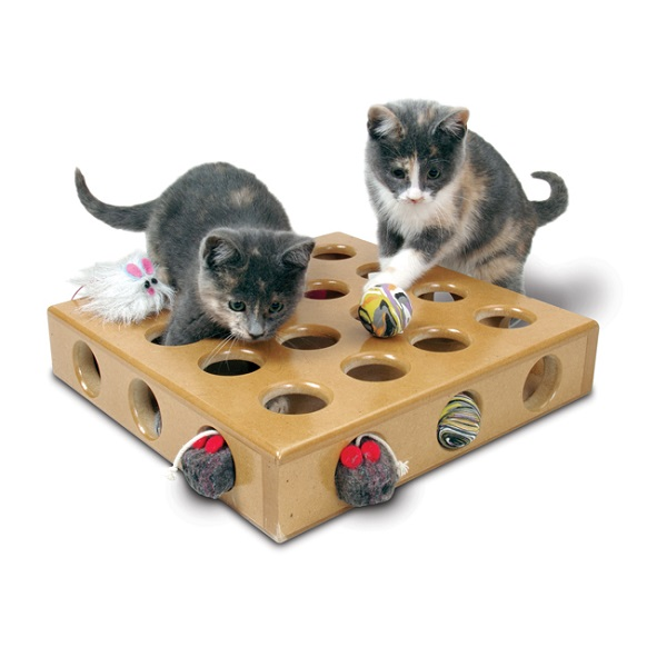 Toys For Cards : Cat toys scratching posts tunnels catnip the